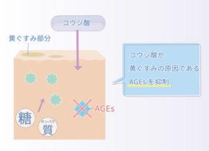 コウジ酸が黄ぐすみの原因であるAGEsを抑制