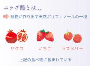 エラグ酸とは… 植物が作り出す天然ポリフェノールの一種 ザクロ いちご ラズベリー 上記の食べ物に含まれている