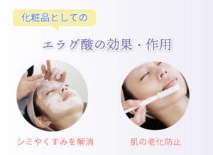 化粧品としての エラグ酸の効果・作用 シミやくすみを解消 肌の老化防止