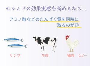 セラミドの効果実感を高めるなら… アミノ酸などのたんぱく質を同時に取るのが◎ サンマ 牛肉 鶏肉 など…