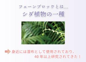 フェーンブロックとは… シダ植物の一種 身近には湿布として使用されており、40年以上研究されてきた!