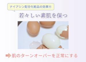 ナイアシン配合化粧品の効果④ 若々しい素肌を保つ 肌のターンオーバーを正常にする
