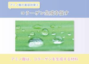 アミノ酸の美容効果② コラーゲン生成を促す アミノ酸は、コラーゲンを生成する材料
