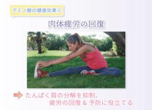 アミノ酸の健康効果② 肉体疲労の回復 たんぱく質の分解を抑制、疲労の回復&予防に役立てる