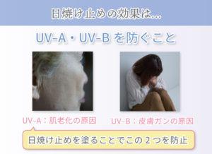 日焼け止めの効果は… UV-A・UV-Bを防ぐこと UV-A:肌老化の原因 UV-B:皮膚ガンの原因 日焼け止めを塗ることでこの2つを防止