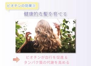 ビオチンの効果③ 健康的な髪を育てる ビオチンが血行を促進&タンパク質の代謝を高める