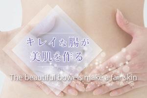 【あなたの腸内環境は?】キレイな腸が美肌を作る!今すぐできる善玉菌の増やし方