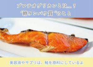 """プロテオグリカンとは…? """"糖タンパク質 """"のこと 美容液やサプリは、鮭を原料にしているよ"""