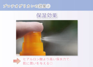 プロテオグリカンの効果② 保湿効果 ヒアルロン酸より高い保水力で、肌に潤いを与える◎