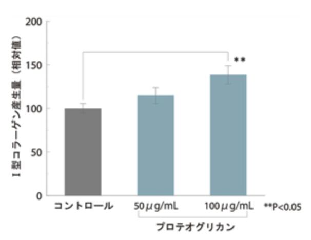 プロテオグリカンはコラーゲン生産力を高める