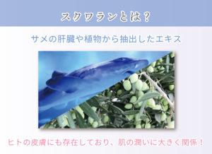 スクワランとは? サメの肝臓や植物から抽出したエキス ヒトの皮膚にも存在しており、肌の潤いに大きく関係!