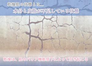 乾燥肌の状態とは… 水分と皮脂が不足している状態 乾燥は、肌のバリア機能低下によって引き起こる