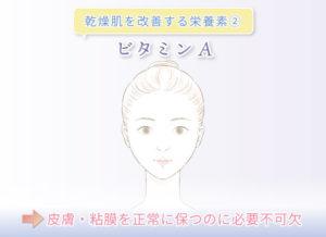 乾燥肌を改善する栄養素② ビタミンA →皮膚・粘膜を正常に保つのに必要不可欠