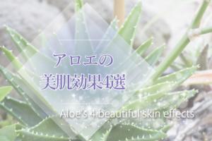 《研究で解明》アロエの美肌効果4選!シミやニキビ跡にもアロエが効くって知ってた?