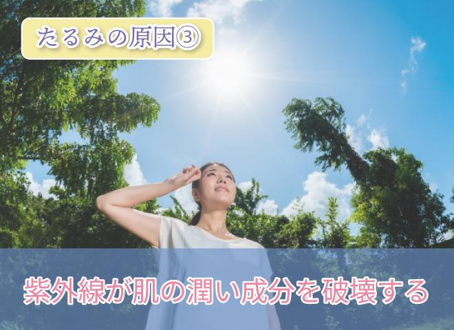 たるみの原因③ 紫外線が肌の潤い成分を破壊する